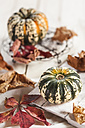 Different small pumpkins, wooden board and autumn leaves - SBDF001377