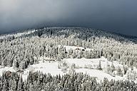 Austria, Salzburg State, Altenmarkt-Zauchensee, Farmhouses in winter - HHF004937