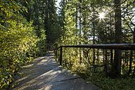 Germany, Bavaria, Bavarian Forest National Park, Wooden boardwalk at Lake Grosser Abersee - STSF000555