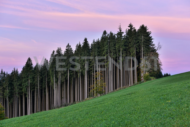 Germany, Bavaria, Allgaeu, landscape at Auerberg - FDF000077