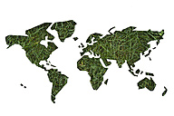 World map made of grass - OPF000034