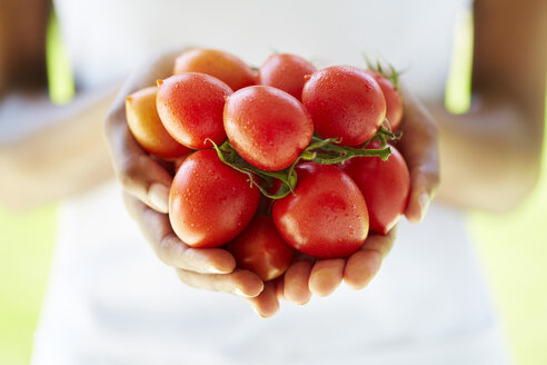 Woman's hands holding tomatoes - ZEF001880