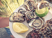 Fresh raw oysters in half shell with lime on a plate - ABAF001571