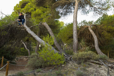Spain, Balearic Islands, Majorca, one teenage boy sitting in a tree - MSF004350