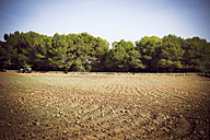 Spain, Baleares, Formentera, field with tractor - CMF000196