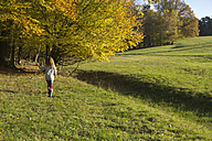 Germany, Bavaria, Landshut, girl walking on meadow in autumn - YFF000262