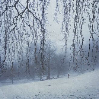 Germany, near Wuppertal, Man walking in snow covered forest - DWI000288