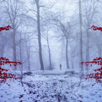 Germany, near Wuppertal, Man on forest path in winter, digital manipulation - DWI000291