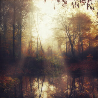Germany, near Wuppertal, Pond in a park in autumn - DWI000293