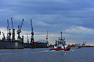 Germany, Hamburg, River Elbe with tugboat - MIZF000791