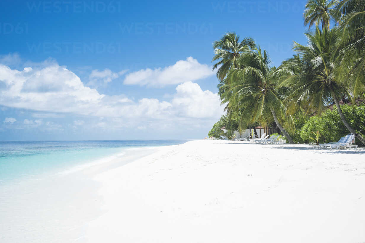 Maledives, Ari Atoll, view to empty dream beach with palms and beach loungers - FLF000571 - Florian Löbermann/Westend61