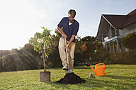 Man planting tree in garden - RBF002019