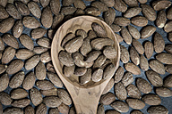 Wooden spoon and salted and roasted almonds - SARF001073