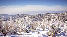 Germany, Baden-Wuerttemberg, winter landscape at Black forest - PUF000327