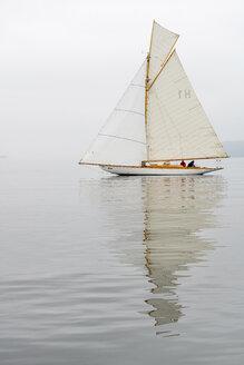 Germany, Baden-Wuerttemberg, Lake Constance, sailing boat in mist near Bodman - SH001729