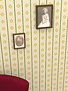Two picture frames with old photographies hanging on yellow patterned wallpaper - UWF000275