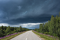 Finland, Lapland, road to Rovaniemi with thunderstorm - JBF000153