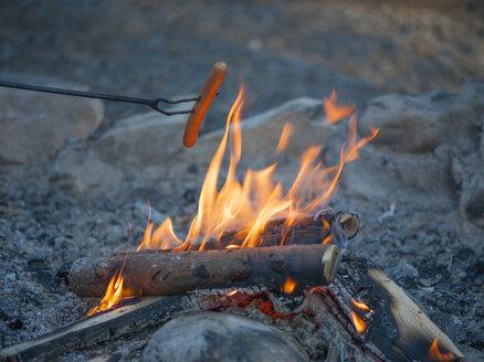 Sausage over campfire - JBF000178