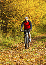 Man riding mountaimbike in autumnal forest - STSF000645