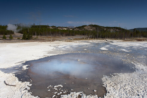 USA, Wyoming, Yellowstone National Park, Norris Geyser - NNF000088