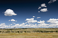 USA, South Dakota, Landscape with windmill - NNF000100