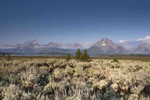 USA, Wyoming, Grand Teton National Park - NNF000119