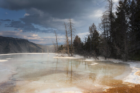 USA, Wyoming, Mammoth Hot Springs, Yellowstone National Park - NNF000131
