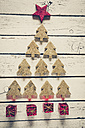 Christmas tree build of fir trees and little red Christmas gift boxes - SARF001113