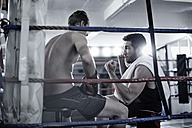 Boxer having a break with trainer in the corner of the boxing ring - ZEF002504