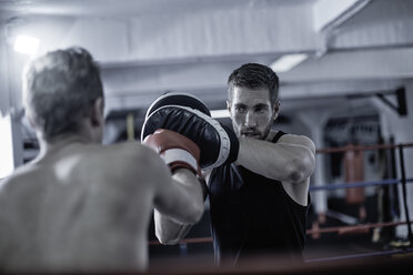 Coach with boxer doing training in boxing ring - ZEF002511