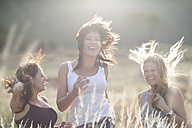 South Africa, Girl friends dancing and jumping in field - ZEF002770