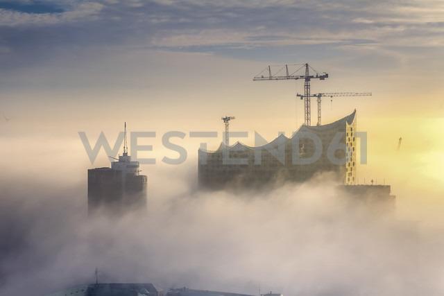 Germany, Hamburg, aerial view of the Elbphilharmonie in dense fog - NKF000219