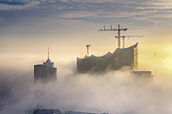 Germany, Hamburg, aerial view of the Elbphilharmonie in dense fog - NKF000219