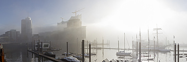 Germany, Hamburg, Elbphilharmonie and Hafencity in dense fog - NKF000225