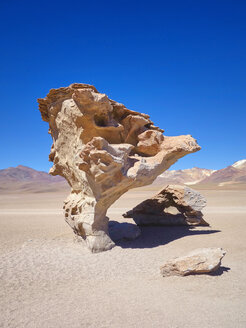 South America, Bolivia, petrified tree at Salar de Uyuni area - SEGF000183