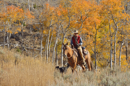 USA, Wyoming, Big Horn Mountains, riding cowgirl in autumn - RUEF001295