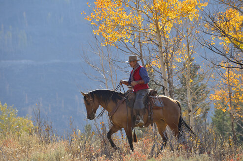 USA, Wyoming, Big Horn Mountains, riding cowboy in autumn - RUEF001309
