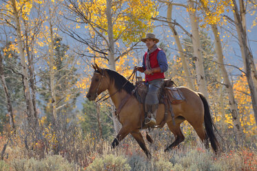USA, Wyoming, Big Horn Mountains, riding cowboy in autumn - RUEF001312