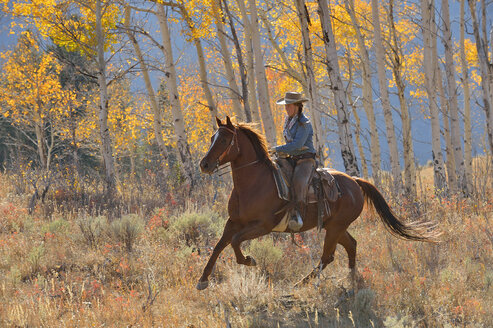 USA, Wyoming, Big Horn Mountains, riding cowgirl in autumn - RUEF001313