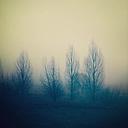 Landscape in autumn - SEGF000167