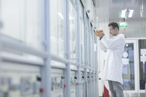 Chemist working in lab holding round bottom flask - SGF001246