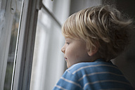 Profile of little boy looking out of window - RB002214