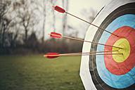 Arrows hitting a target on a field - MFF001331