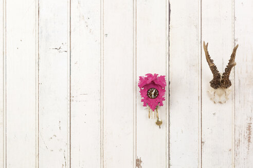 Deer antler and pink cuckoo clock hanging on white wooden wall - DRF001219