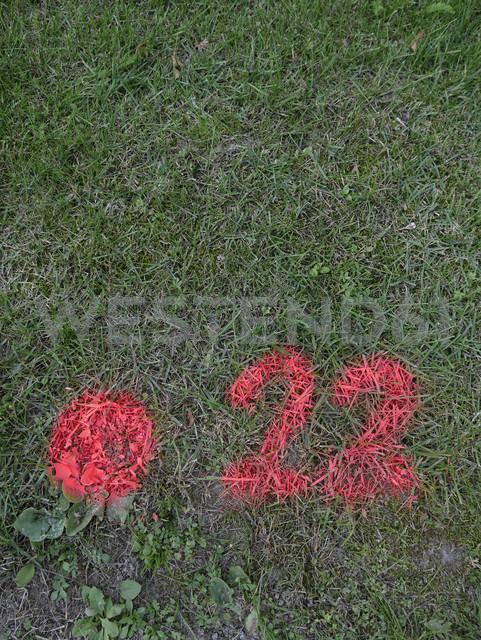 Pink number sprayed on lawn - JMF000302