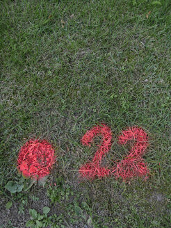 Pink number sprayed on lawn - JMF000302