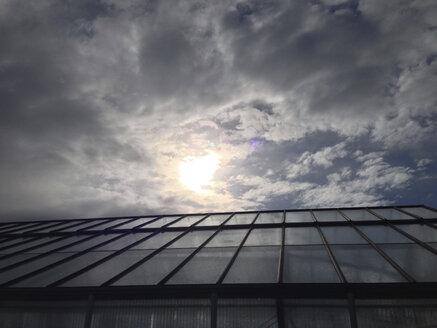 Greenhouse, - JEDF000217
