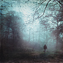 Germany, man walking on forest track in the morning - DWI000372