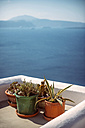 Greece, Cyclades, Santorini, Oia, view to flower pots on a terrace in front of the sea - EH000026