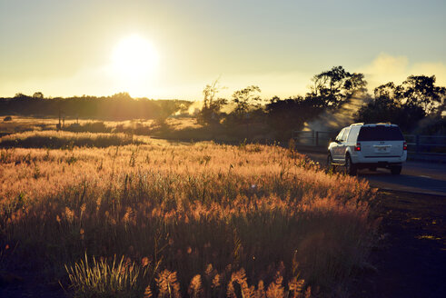 USA, Hawaii, Big Island, Volcanoes National Park, sulfur vapor in morning twilight at Steaming Bluff - BRF000918